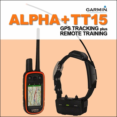 Tracking Electronic Training Quick Track Rats Midnight